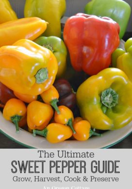 The Ultimate Sweet Pepper Guide: Grow, Harvest, Cook & Preserve