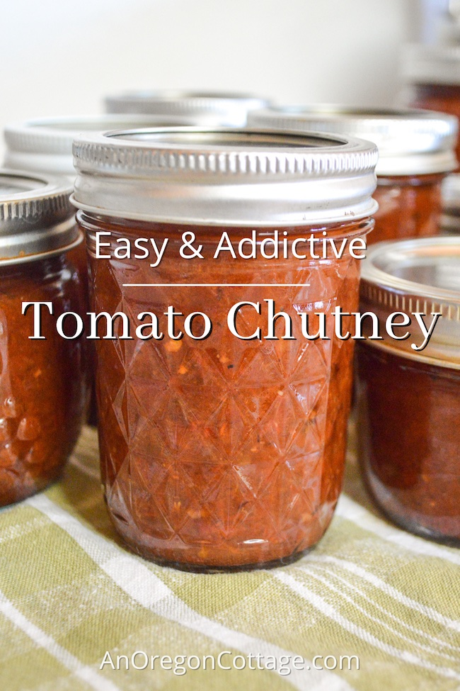 easy-addictive-tomato-chutney-recipe