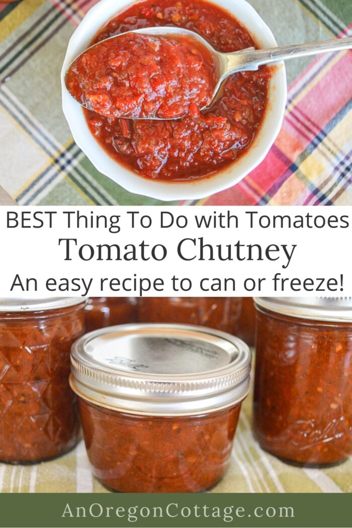 tomato chutney-easy recipe to can-freeze