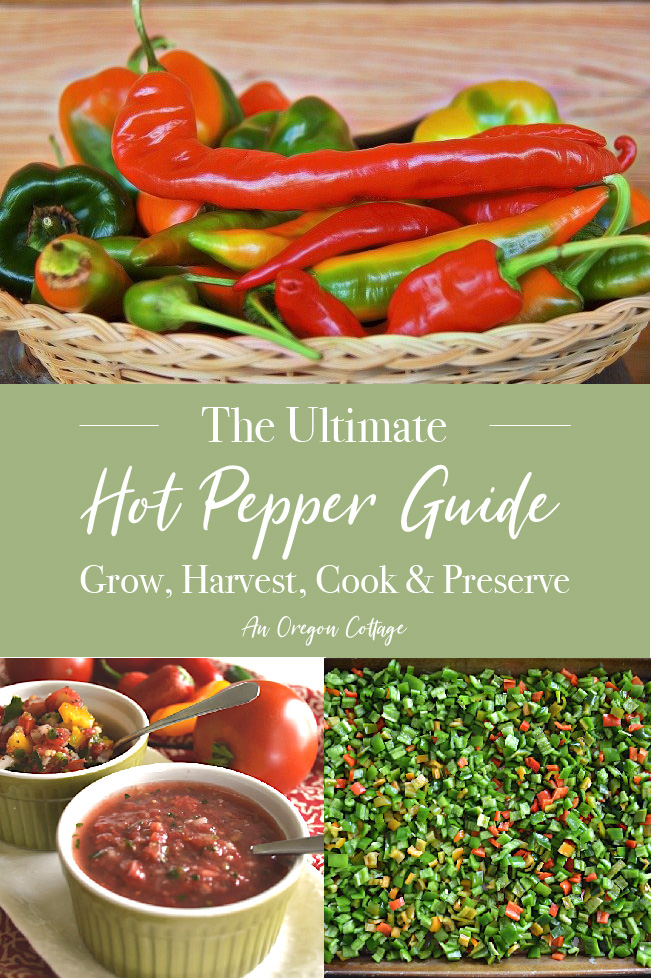 Ultimate Hot Pepper Guide pin image