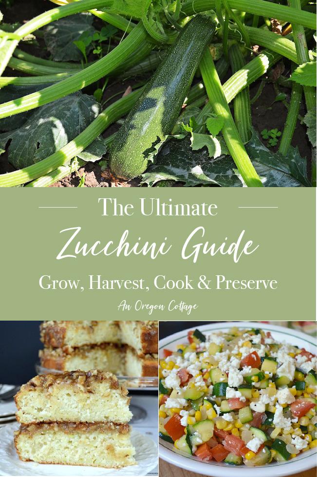 Ultimate Zucchini Guide pin image