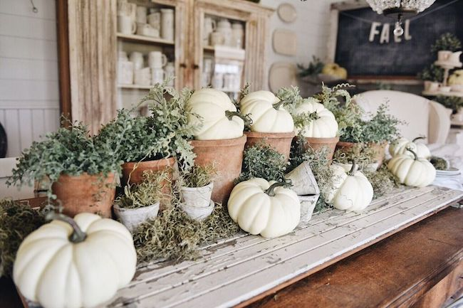 Liz Marie Blog-rustic garden fall table