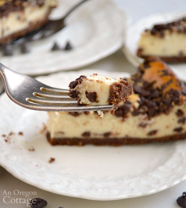 Foolproof Chocolate Chip Cheesecake on fork