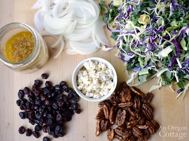 Kale Cranberry Salad ingredients