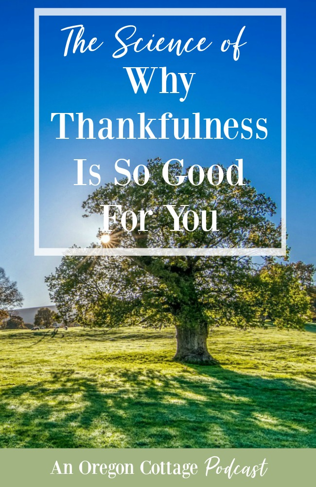 Sunrise and tree-Why Thankfulness is good for you