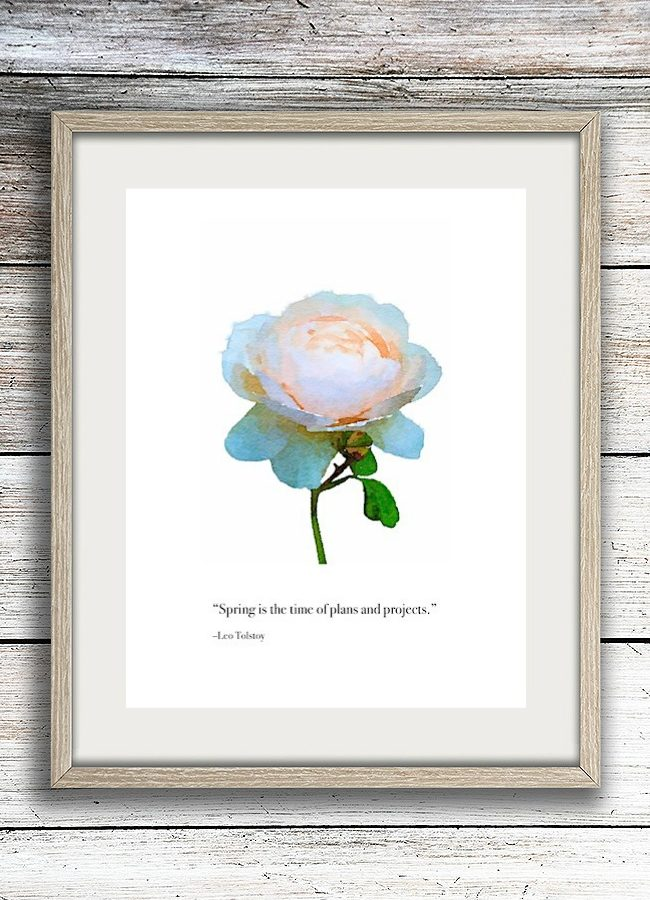 Blush rose garden quote framed printable