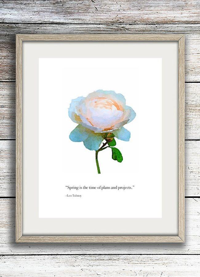 Blush rose garden quote framed printable