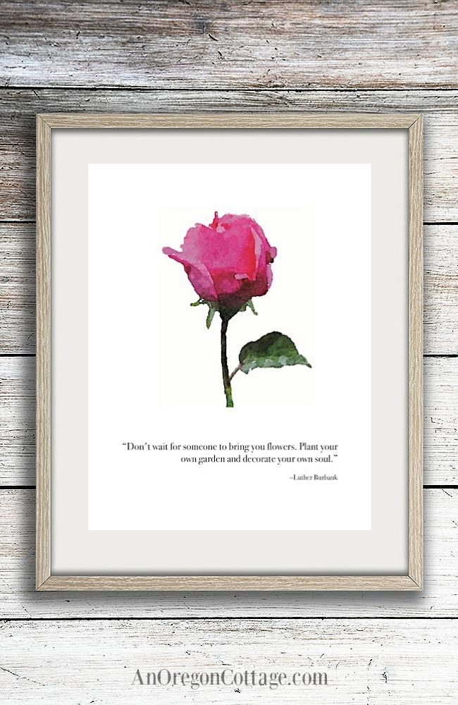 Dark pink rose garden quote framed printable