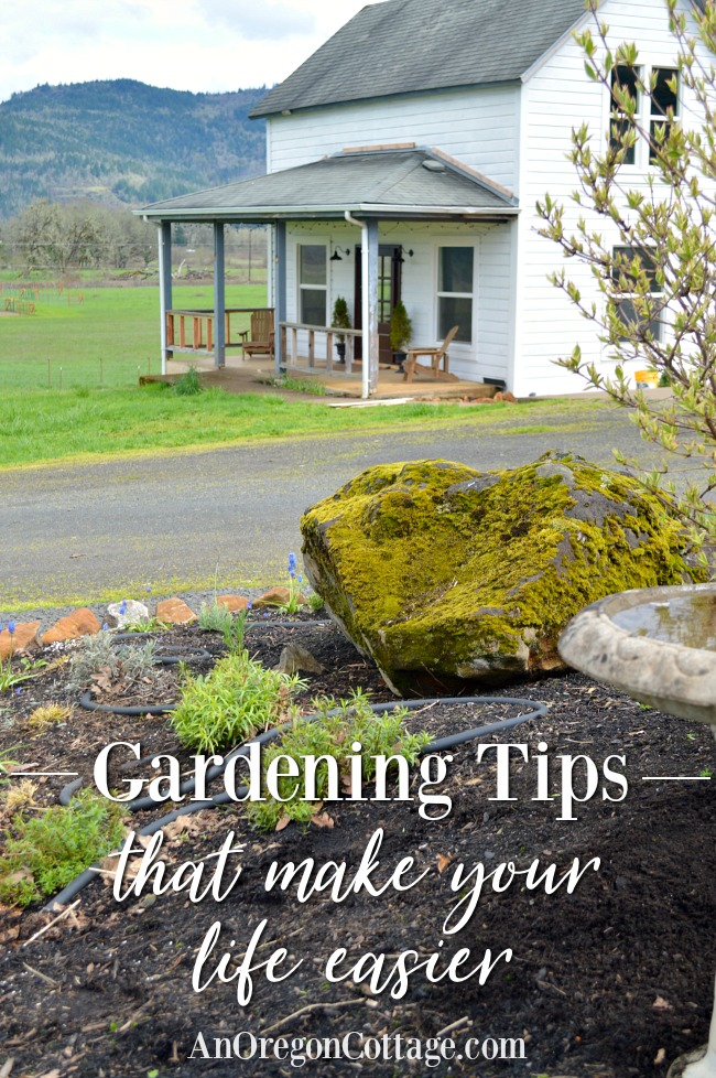 Gardening Tips lead image of farmhouse garden