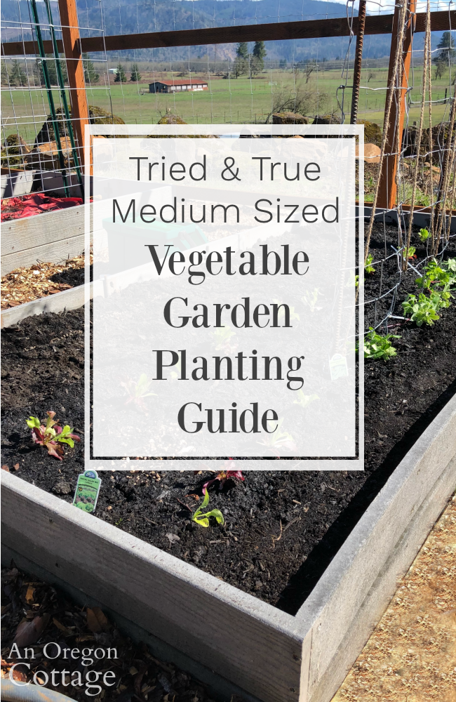 Vegetable garden planting guide2019