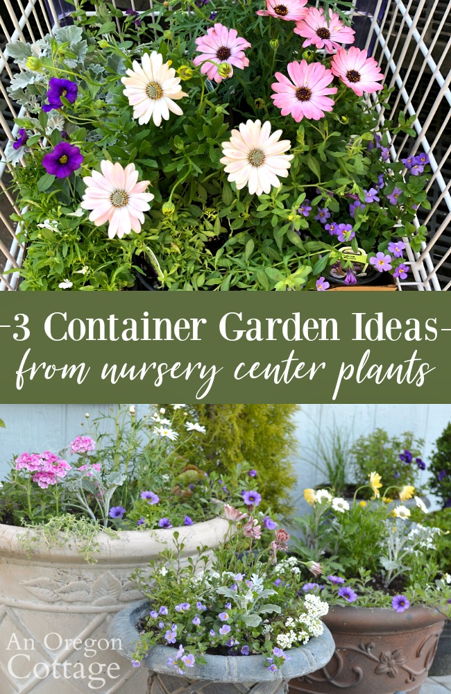 3 Container Garden Ideas from nursery center plants