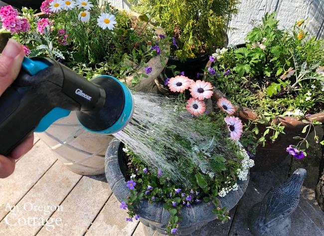 Watering container garden