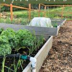 DIY garden irrigation system for raised beds