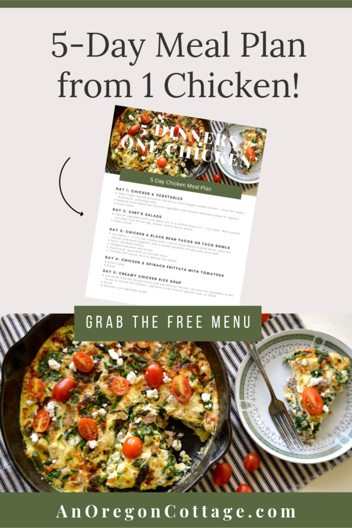 5 Dinners-1 Chicken meal plan pin image