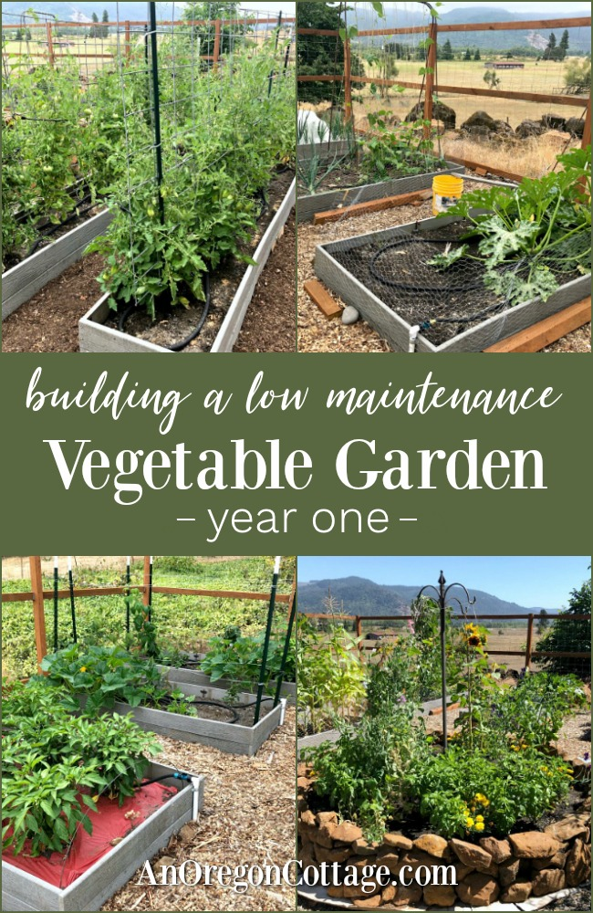 Building low maintenance vegetable garden pin image