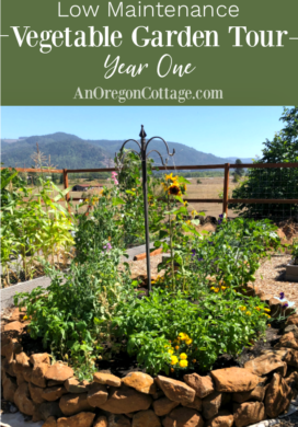 Low maintenance vegetable garden tour year one