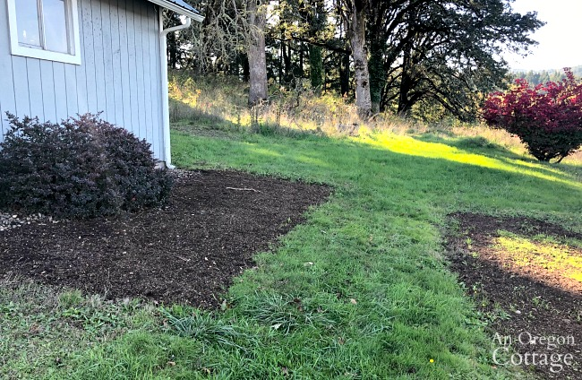 Other areas reseeded on property