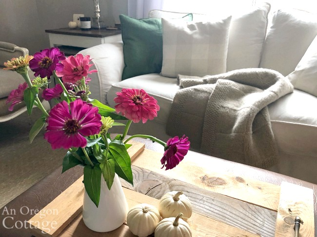 fall 2019 couch with zinnias
