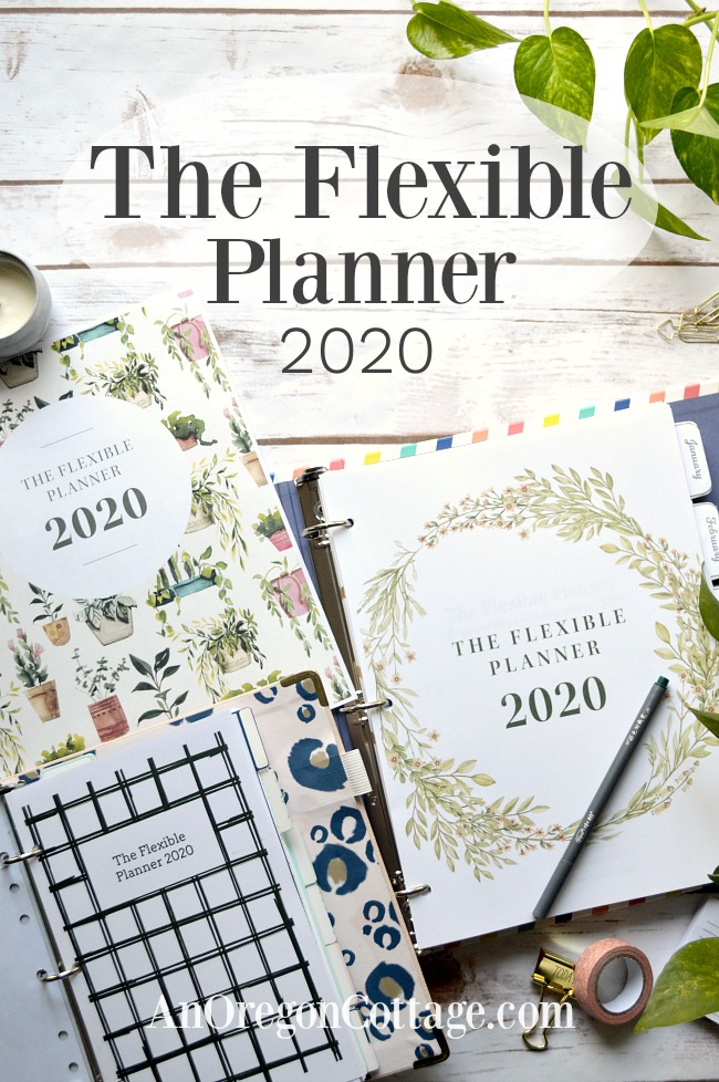 2020 Flexible Planner pin