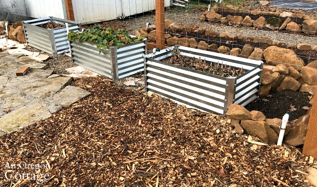 Raised bed vegetable garden finished water system
