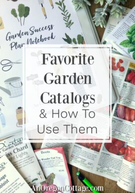 Favorite garden catalogs with seeds and notebook
