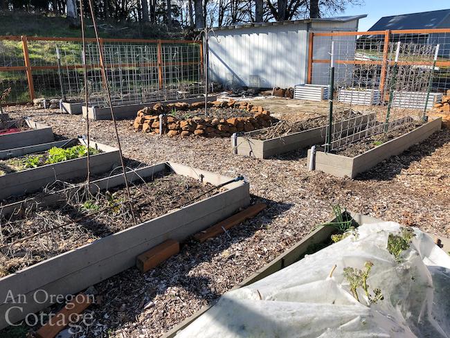 February vegetable garden-east corner_