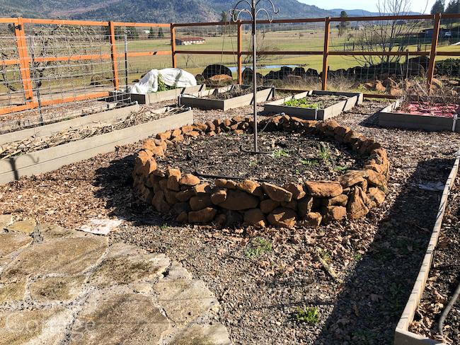 february-20 vegetable garden rock wall bed