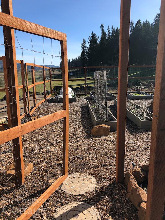 gate into Feb-20 vegetable garden