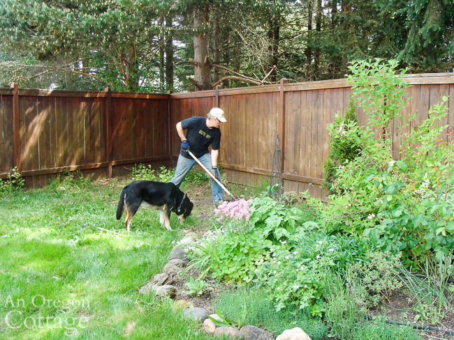 digging out perennial weeds