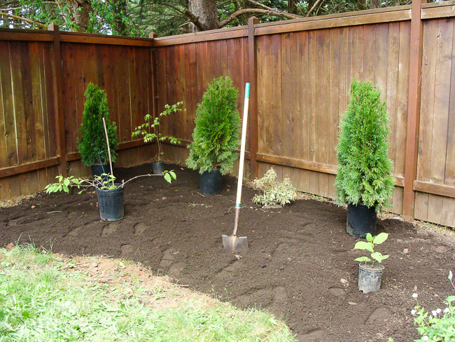 Side yard bed during border creation