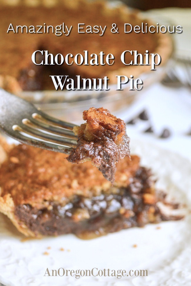 easy chocolate chip walnut pie