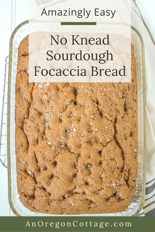 amazingly easy no knead sourdough focaccia above