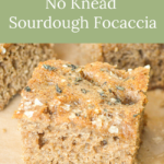mix and sit no knead sourdough focaccia