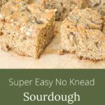 super easy no knead sourdough focaccia
