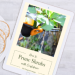 Free Pruning Shrubs Ebook