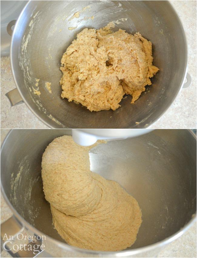 Sourdough sandwich bread dough