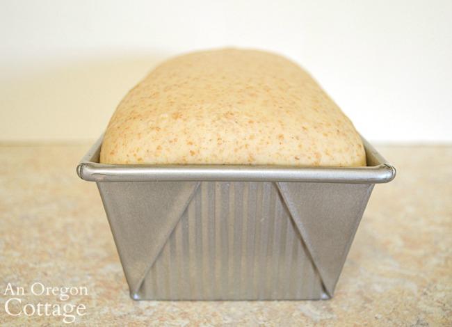 risen soft sourdough sandwich bread