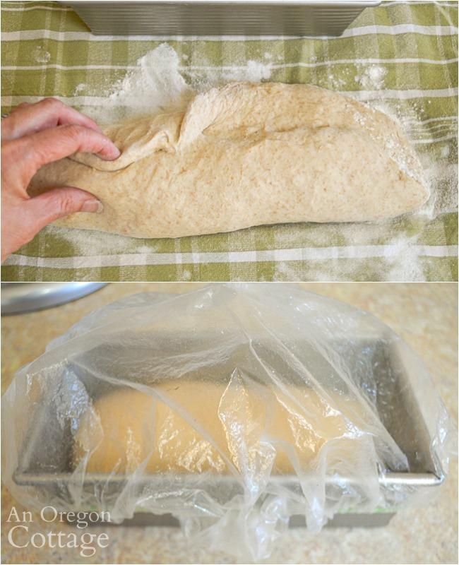 shaping and raising sourdough sandwich dough_
