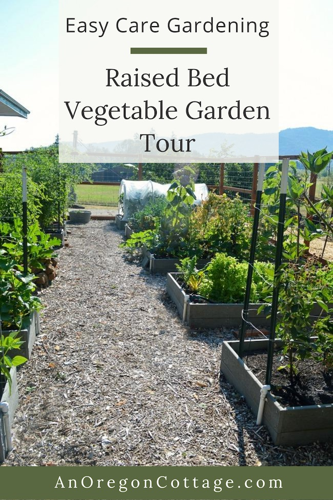 easy care gardening vegetable garden tour