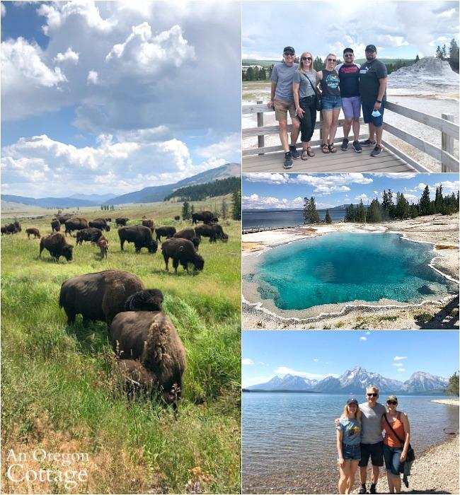 family yellowstone-grand tetons vacation