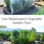 low maintenance vegetable garden tour