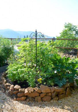 raised bed vegetable garden year3_featured
