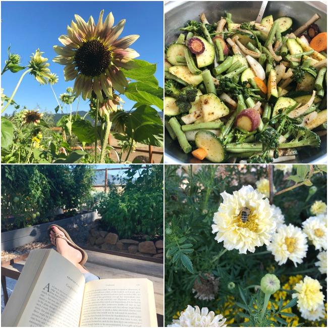 enjoying summer collage-flowers-reading-vegetables