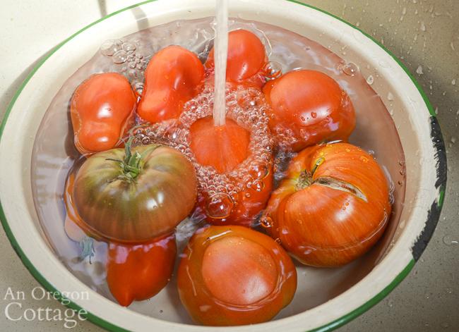 washing tomatoes in enamel pan