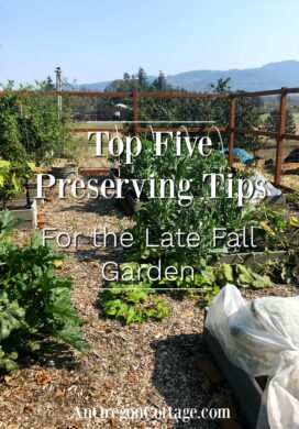 five preserving tips for late fall garden