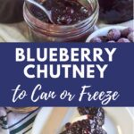 blueberry chutney-can or freeze