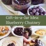 blueberry chutney gift-in-a-jar