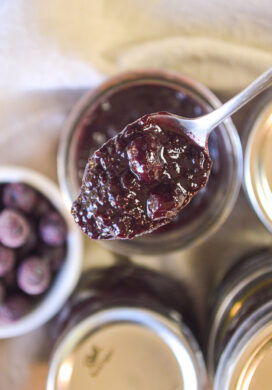 blueberry chutney on spoon_featured