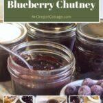 spicy honey sweetened blueberry chutney