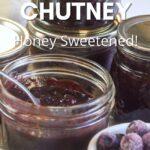 sweet-savory blueberry chutney